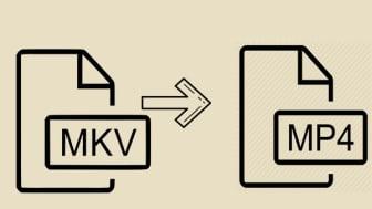 So konvertieren Sie MKV in MP4 ohne Qualitätsverlust