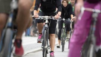 Trafikverket står bakom klassificeringen av nationella cykelturismleder i Sverige. Foto: News Øresund – Jenny Andersson.