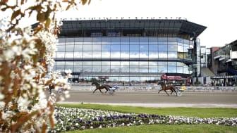 Bistron på Solvalla öppnar under tävlingsdagar med start 9 oktober. Foto: TR Bild