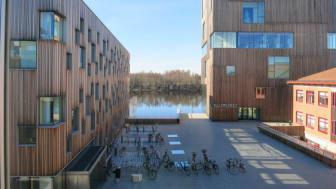 Arktiekthögskolan ligger på Umeå universitets Konstnärliga campus vid älven. Foto: Ulrika Bergfors Kriström