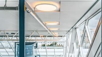 RISE lyser opp kontorene med produkter fra DEFA