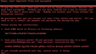 Utpressad. Möts du av denna skärm när du startar datorn har utpressningsprogramvara Nyetya tagit över dina dokument.