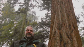 James Monk and the UK's tallest Giant Redwood