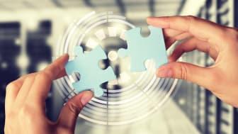 Välja e-handelsplattform del 3 – Organisationen
