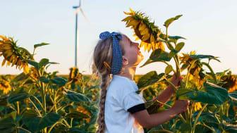 Nestlé har besluttet at halvere sine emissioner inden 2030 og opnå CO2-neutralitet inden 2050 – selv når virksomheden vokser. Det er der lagt en detaljeret køreplan for.