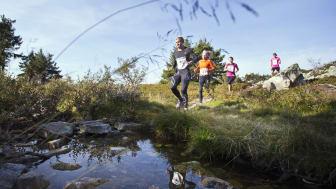 Trysilrypa terrengløp har hatt 33 prosent økning i år
