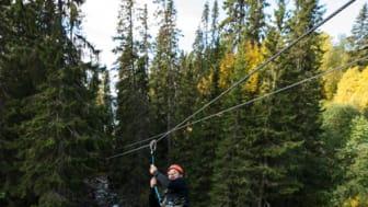 SkiStar sommar Zipline