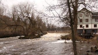 Dammen vid Falkenbergska kvarnen i Västerås där en faunapassage planeras.