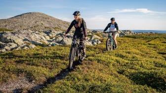 Cykling Trysil