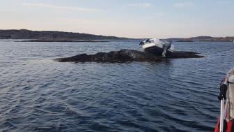 Frivilliga från RS Käringön nomineras till Årets Sjöräddare