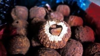 Bok om Amazonas växter för ut den senaste forskningen till lokalbefolkningen