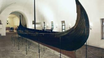 Osebergsskeppet, som byggdes år 820 och grävdes fram 1904-1905, är ett av de tre vikingaskepp som förvaras på Vikingskipshuset i Oslo. FOTO: Vikingskipshuset