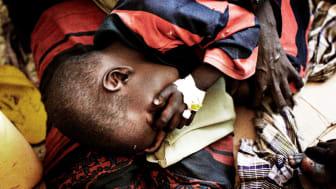 Den växande hungersnöden i Somalia – ytterligare ett bevis på behovet av långsiktiga lösningar