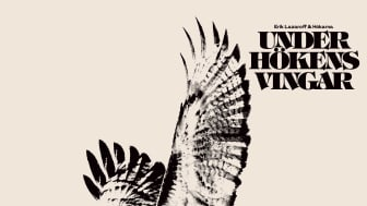 Erik Lazaroff & Hökarna - Under Hökens Vingar - nytt album på Lightning Records!