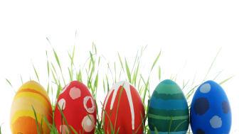 En glad påsk i Halland