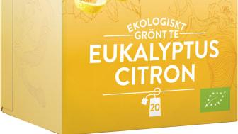 Friggs Ekologiskt grönt te Eukalyptus Citron