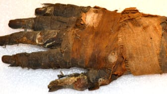Bildtekniken som visar mumier i nytt ljus