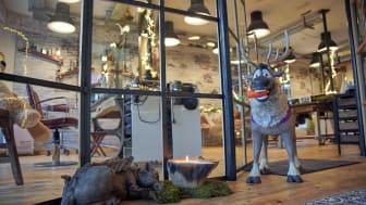 Weihnachtlicher Salon Kamm In Frisöre Aachen