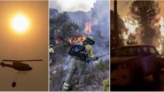 ECC fire pic.jpg