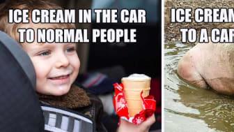 """Internettet oversvømmes i øjeblikket af de såkaldte """"memes"""", der kommenterer på de bilsensitive. Et meme på internettet er en idé eller handling, typisk et foto med en kommentar, der spreder sig på online forums eller sociale medier."""