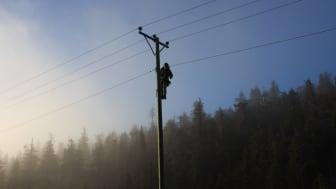 Genombrott för Exeris övervakning av elnäten.