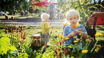 Folkets Trädgård – mötesplatsen för ett hållbart samhälle