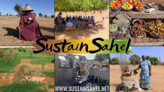 SustainSahel se focalise sur les bonnes pratiques pour intégrer les cultures, les arbustes,  et l'élevage pour améliorer les moyens de subsistance des populations rurales du Sahel ouest africain