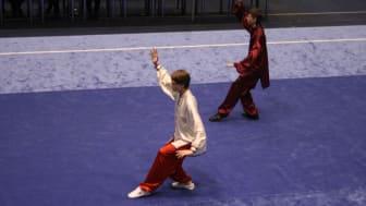 Milos i aksjon i finalen