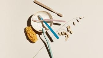 Jordan Green Clean hammasharjat on valmistettu kierrätysmateriaalista