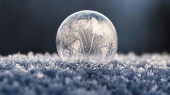 Låga temperaturer – höga elpriser // Veckans kommentar om elmarknaden v. 5. 2021