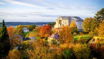 Goetheanum im Herbst (Foto: Xue Li)