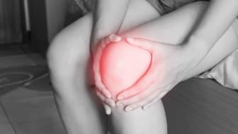 Forskning för att minska nedbrytningen av ledbrosk vid artros är ett av alla de forskningsområden som får stöd av Reumatikerförbundet.