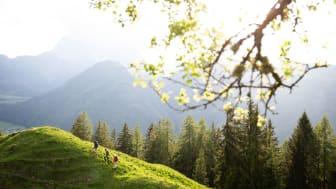 Maier Sports_SS21_Hiking_b_02