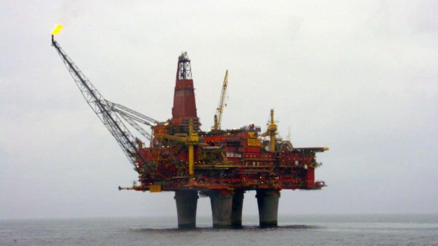 Oljeutvinning i Nordsjön ger skador på fisk