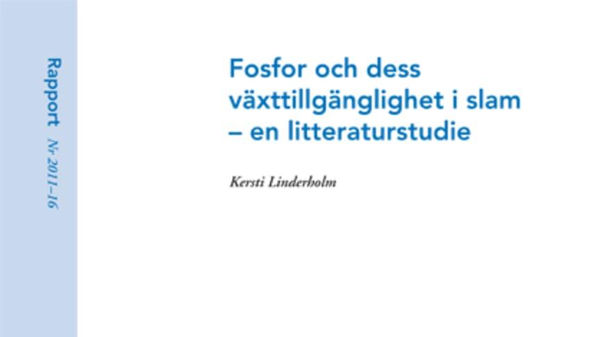 SVU-rapport 2011-16: Fosfor och dess växttillgänglighet i slam - en litteraturstudie