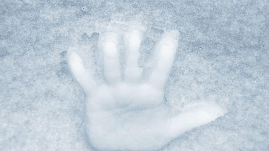Köldträning gör dig tåligare mot kyla