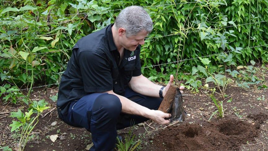 Bild: Opus Bilprovnings Kvalitets- och miljöchef Thomas Nilsson planterar ett träd i byn Serthiac som ligger på ön Espiritu Santo i Vanuatu.