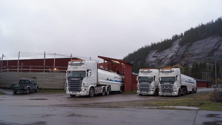 Ranfjord Fiskeprodukter