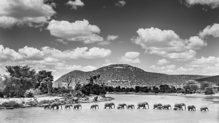 Påminnelse: Konstfoto speglar Afrikas själ