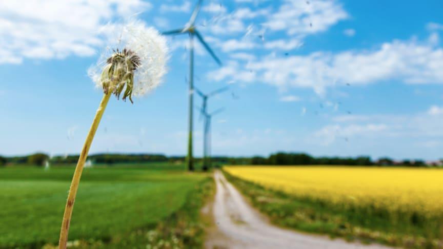 Konkurrenskraft och hållbarhet med hjälp av rätt affärsmodell