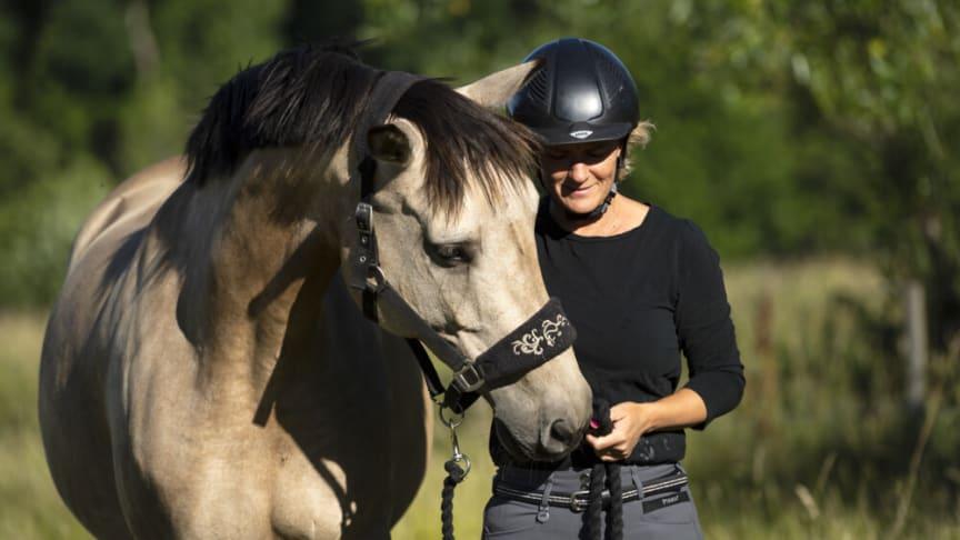 Häst&Ryttare som app