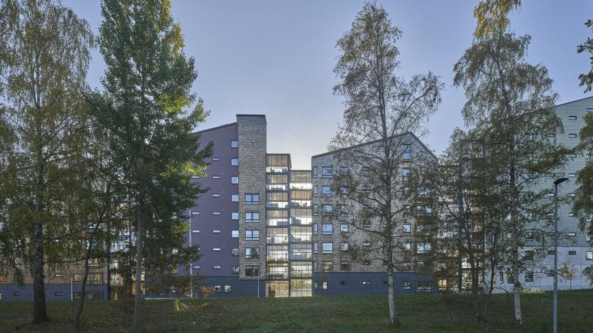 Arkitektsbolagets Vallen. Ett av projekten i utställningen Woodland Sweden.