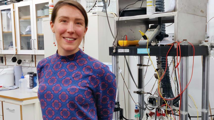 Koordinator Sara Munktell, Swerim