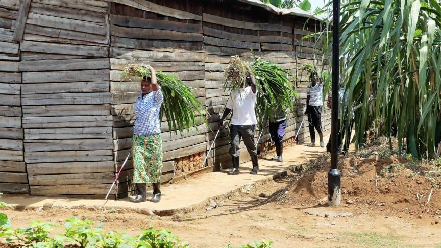 Studenter vid Masaka Resource Centre för personer med synskada och dövblindhet, Kigali i Rwanda. Fotograf: Mia Munkhammar