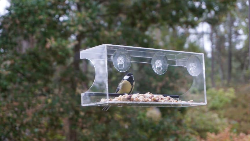 Fuglemateren er helt transparent, og du får utmerket utsikt til fuglene som sitter og spiser.