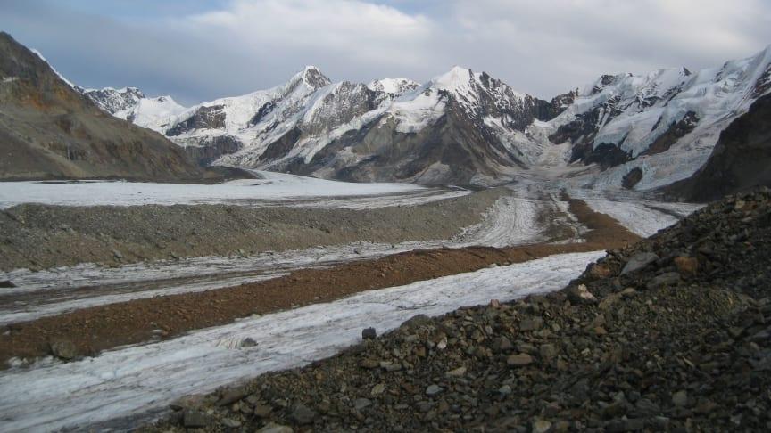 Rock debris cover on glaciers in the Alaska Range