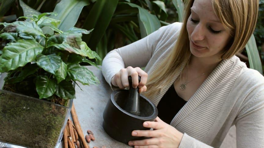 Beim Schoko-Workshop in der Biospäre Potsdam kann man selbst Schokolade herstellen. Foto: Agentur Kraftstoff.