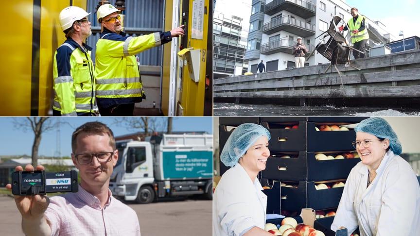Här är finalisterna som kan vinna Helsingborgs stads miljöpris 2019