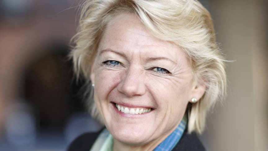 Ulla Hamilton: En trygg, ljus och miljövänlig julbelysning i Stockholm i vinter