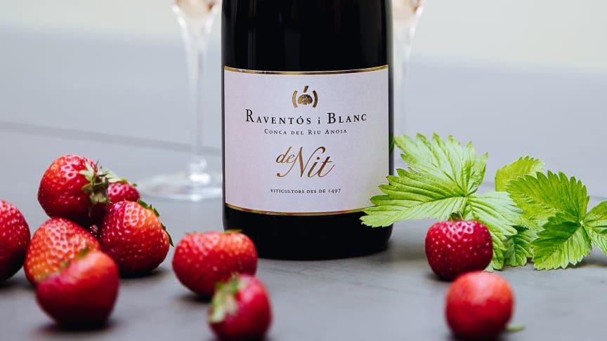 Mousserande rosévin från historiska Raventós i Blanc – Legenden om Cava